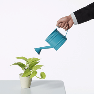 Best Practices For B2B Lead Nurturing Initiatives Part 1