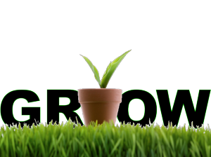Grow your business using lead nurturing